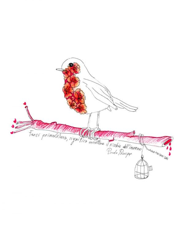 Pettirosso designed by Anna Molisani. T-shirt bio girocollo a maniche corte con cuciture laterali, pulite, minimal. Indossa TEENTO. Wear The Passion!